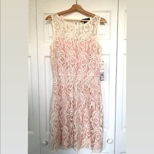 Pink and cream Femme Lace Dress